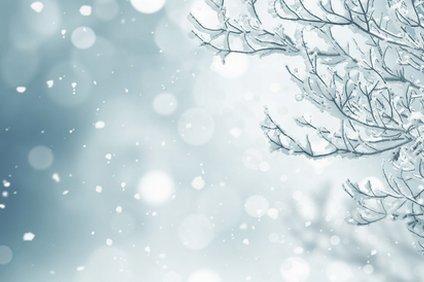 雨から雪に変わる
